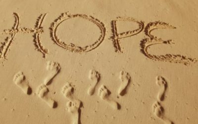 August 2020 Newsletter – What Gives You Hope?